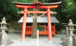 shizume2