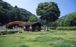 oohashi_spring